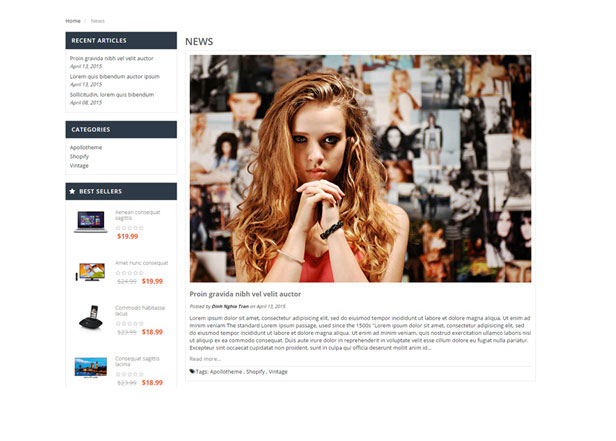 Blog Shopify Themes