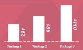 Shopify Package