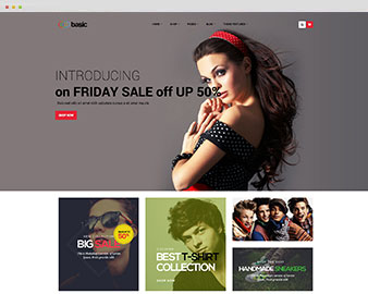 ap-basic-fashion-shopify-theme
