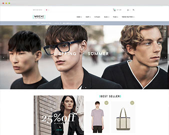 preview shopify theme
