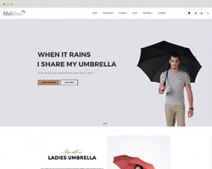 ap-maldives-prestashop-theme-features