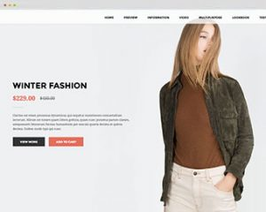ap landing fashion shopify theme