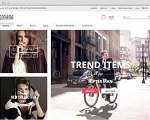 shopify theme fashion
