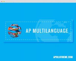 ap Multi language shopify theme