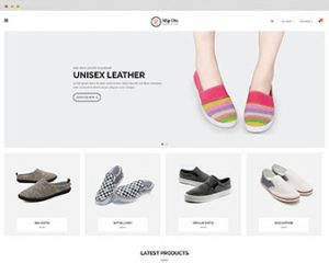 ap-slipon-shopify-theme
