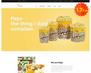 free-ap-payo-prestashop-theme