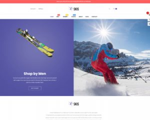 Ap Skis Prestashop Skateboard Themes - sport fashion